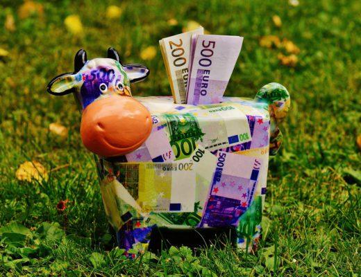 spaarpot van koe met geld